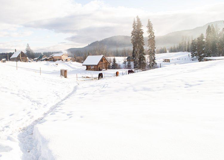 Mountain Christmas (6)